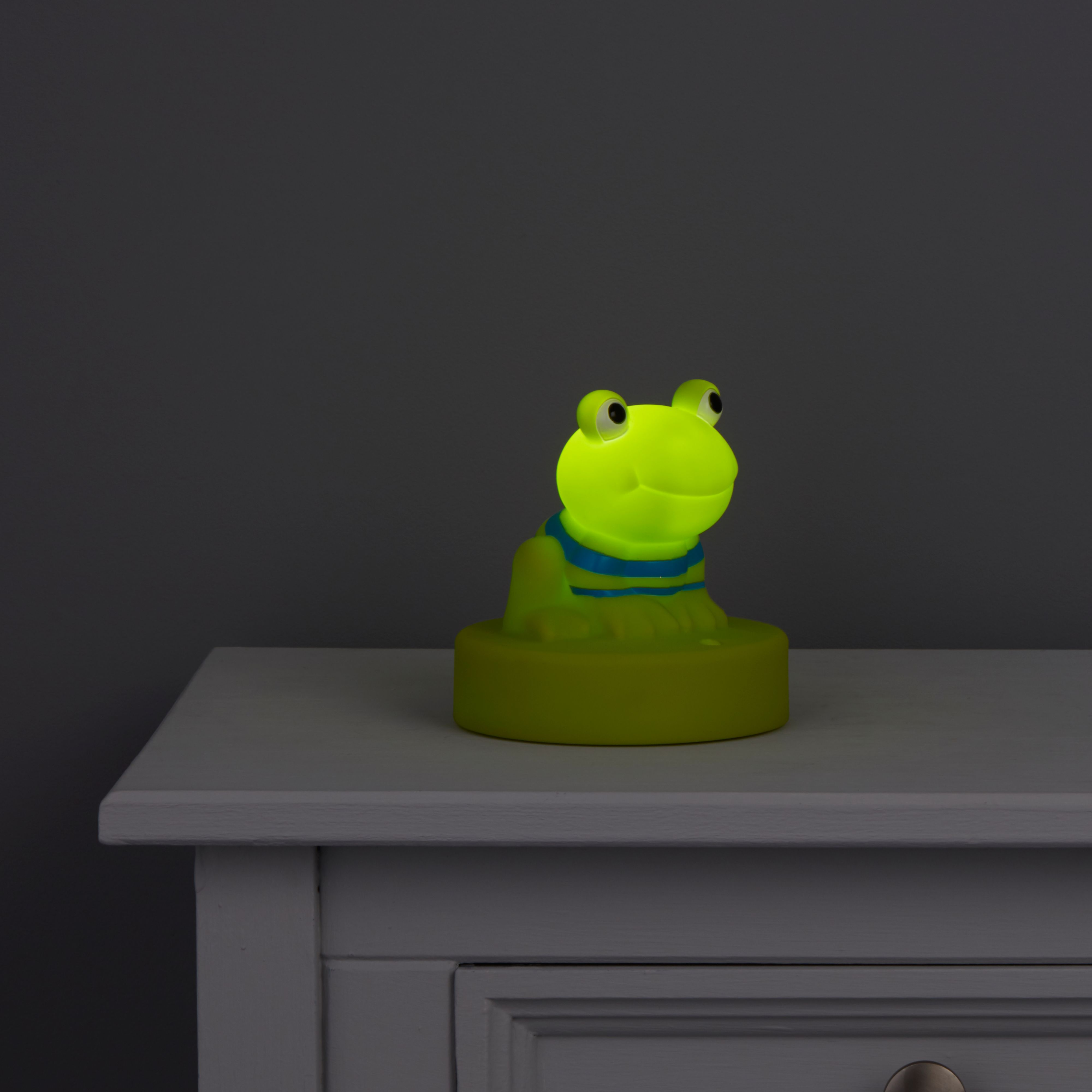 Comfort Frog Colour Changing Comfort Light