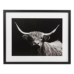 Highland spirit bull Black Framed art (W)530mm (H)430mm
