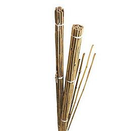 Gardman Bamboo Canes (W)55mm (H)1.84m