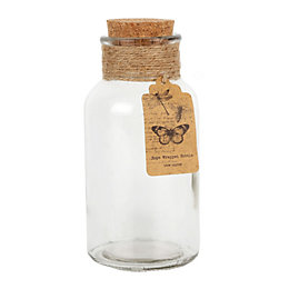 Clear Cork & glass Decorative bottle, Medium