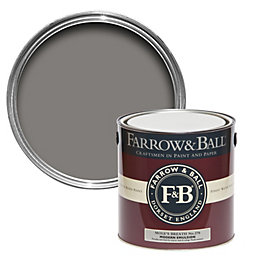 Farrow & Ball Mole's Breath No.276 Matt Modern