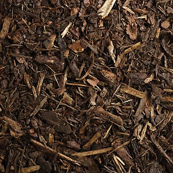 wood chippings as mulch