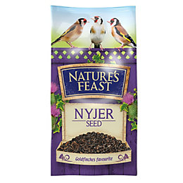 Nature's Feast Nyjer seeds 1750g