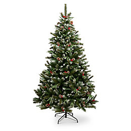 6ft 10in New Jersey spruce Classic Christmas tree