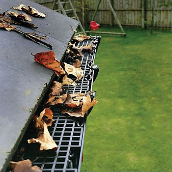 Gutter guards keeping leaves out of gutters