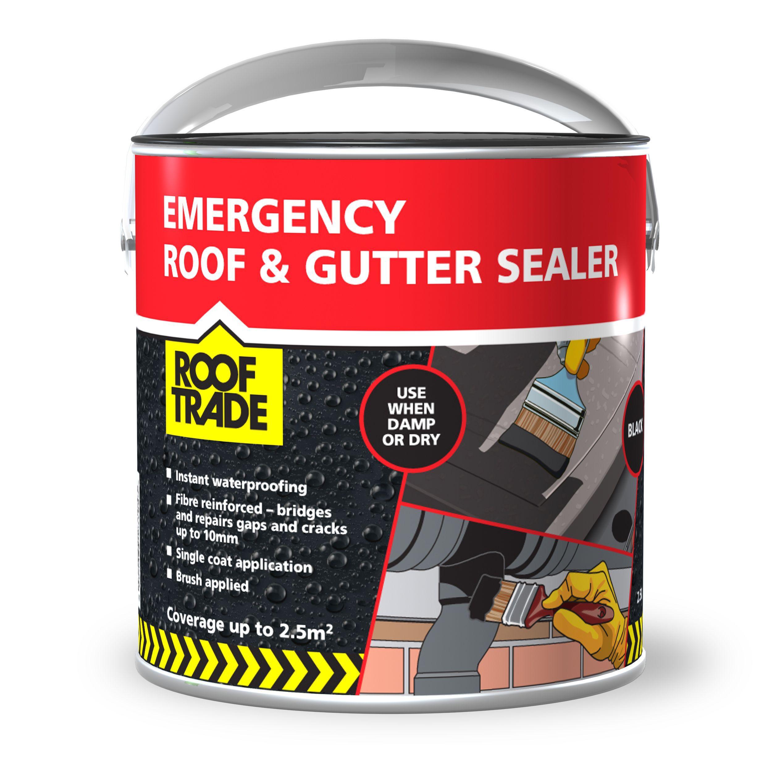 Waterproof Roof Paint B Q