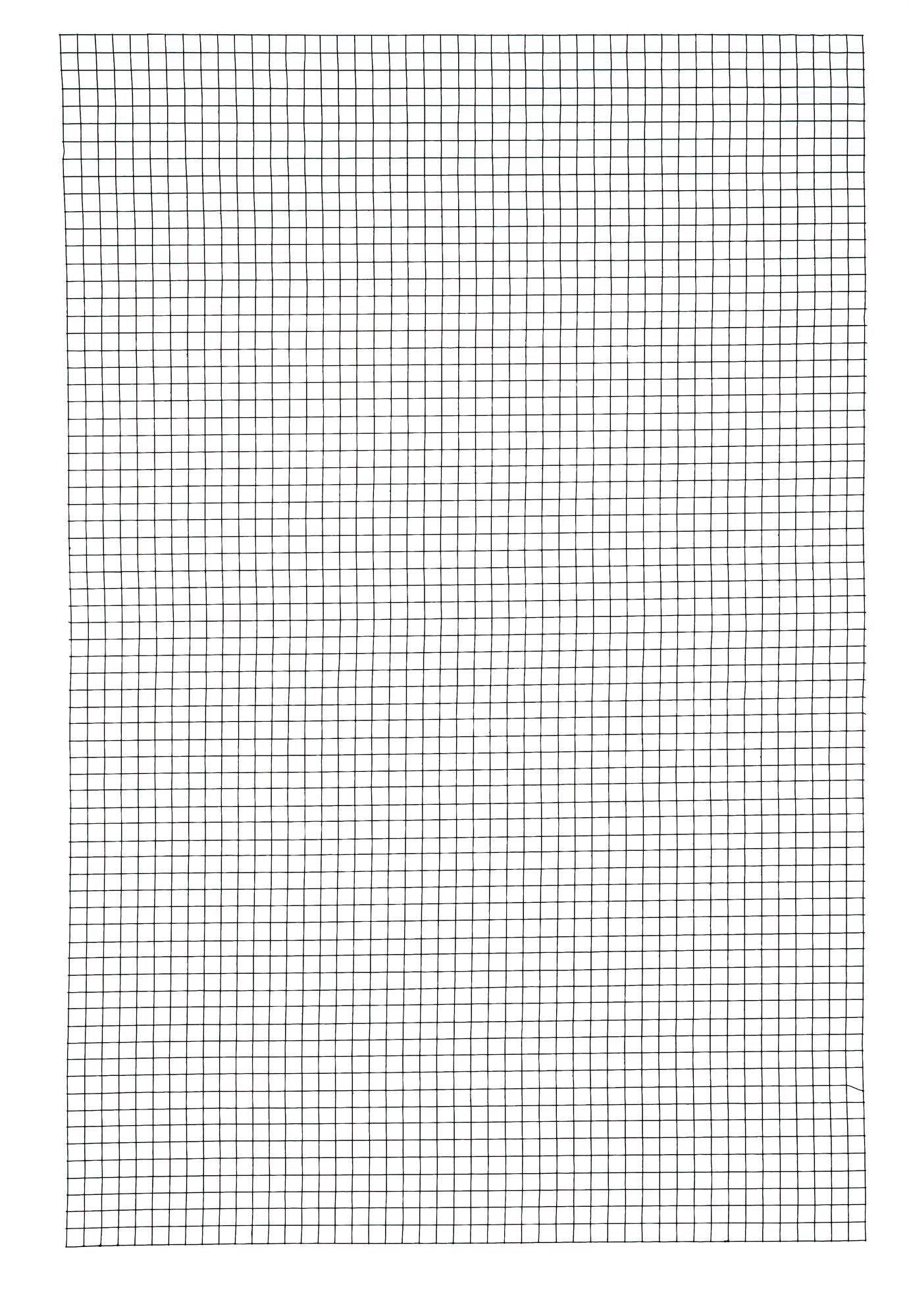 Wire mesh (W)0.9 m (L)0.6m | Departments | DIY at B&Q