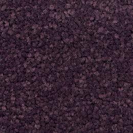 Colours Plum Carpet tile