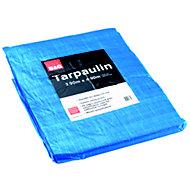 B&Q Tarpaulin (L)4.9m (W)3.9 m