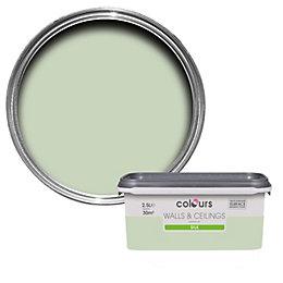Colours Standard Guava Green Silk Emulsion Paint 2.5L
