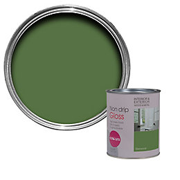 Colours Sherwood Gloss Wood & metal paint 0.75L
