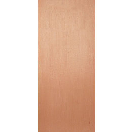 Flush Ply veneer Unglazed External fire door, (H)1981mm