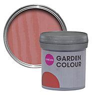 Colours Garden Pomegranate Matt Woodstain 0.05L