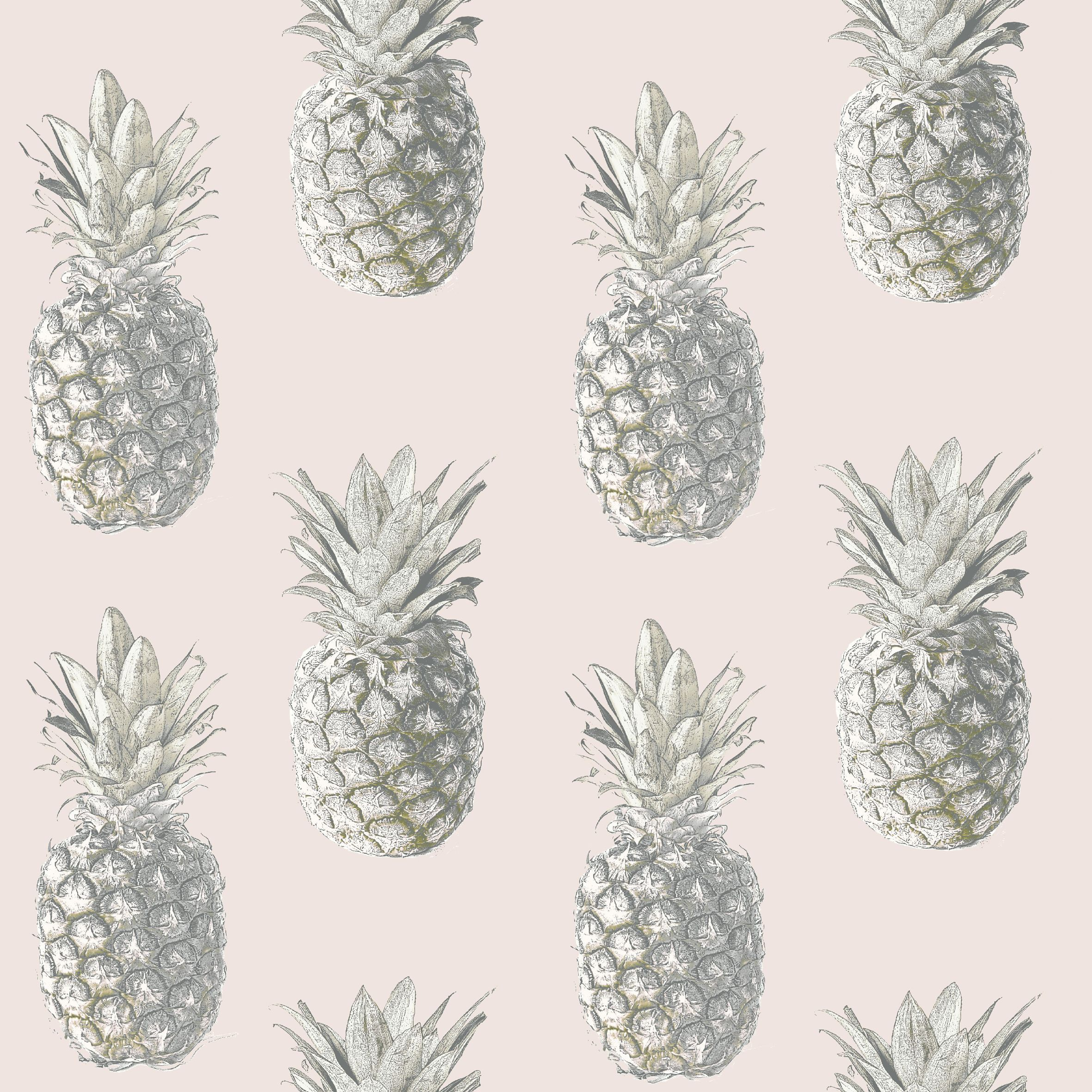 Ideco Home Pink Pineapple Wallpaper Departments Diy At B Amp Q