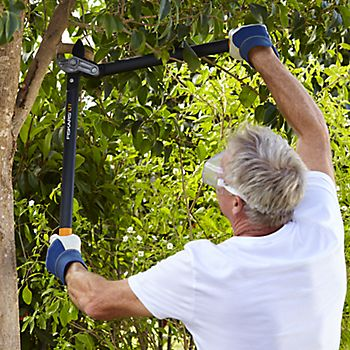 Man pruning tree branch using the Fiskars Powergear Large Anvil Lopper