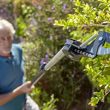 Man pruning tall tree with Fiskars Geared Telescopic Tree Lopper & Saw