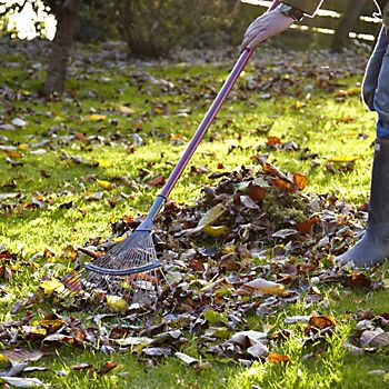 Man using a lawn rake to rake autumn leaves from the lawn