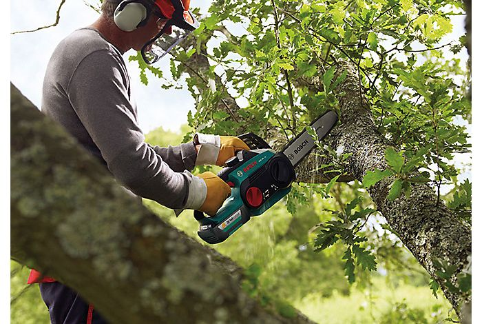 Chainsaw user in tree