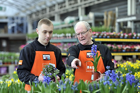 Colleagues with plants in store