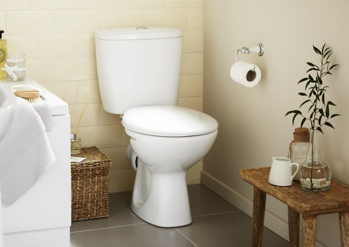 Toilet Amp Toilet Seat Buying Guide Ideas Amp Advice Diy