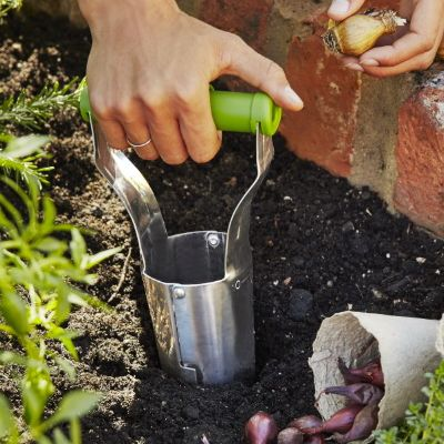 Planting bulbs with a bulb planter