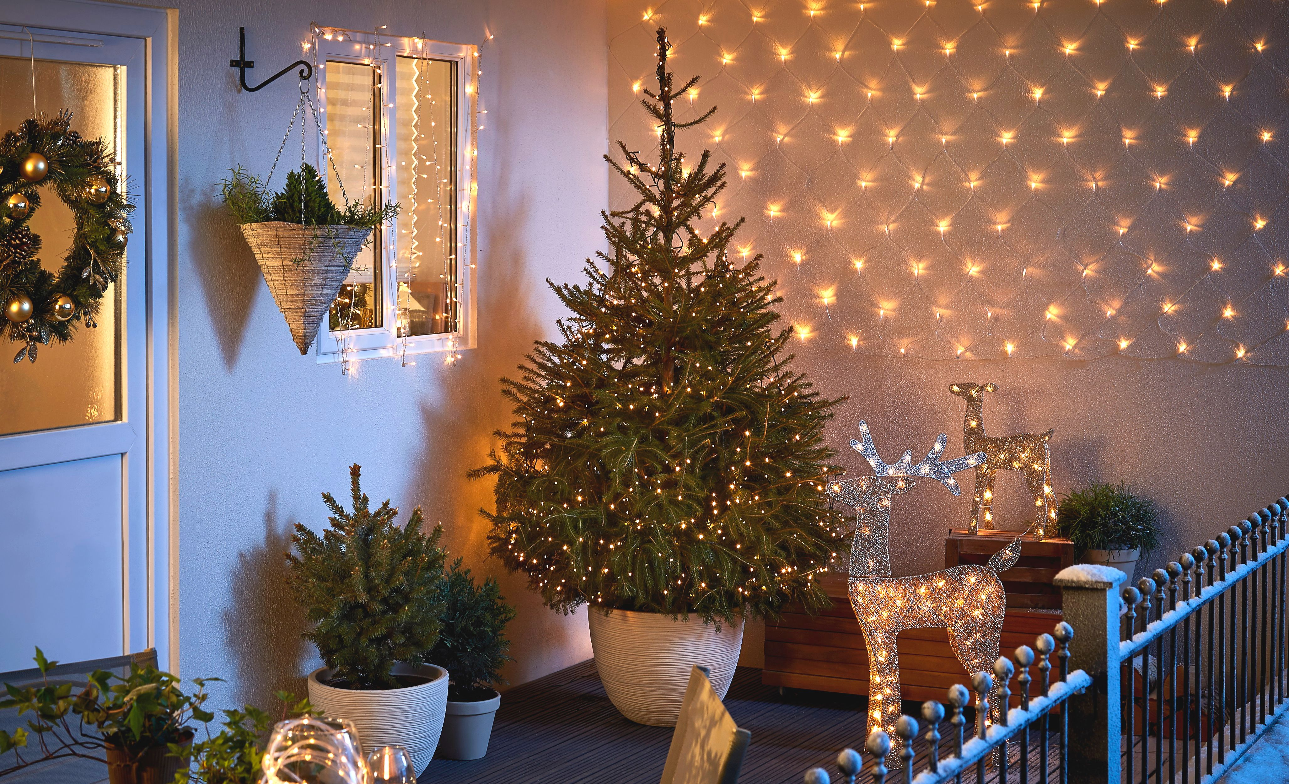 How To Care For A Real Christmas Tree Ideas Amp Advice
