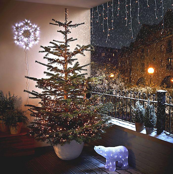 Collection of Real Christmas Trees Liverpool - Christmas Tree ...