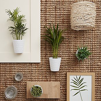 Natural kitchen accessories including real house plants
