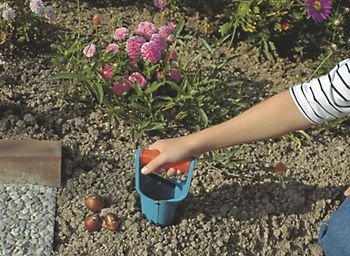 planting bulbs with trowell