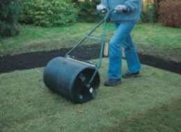 rolling the lawn with a garden roller