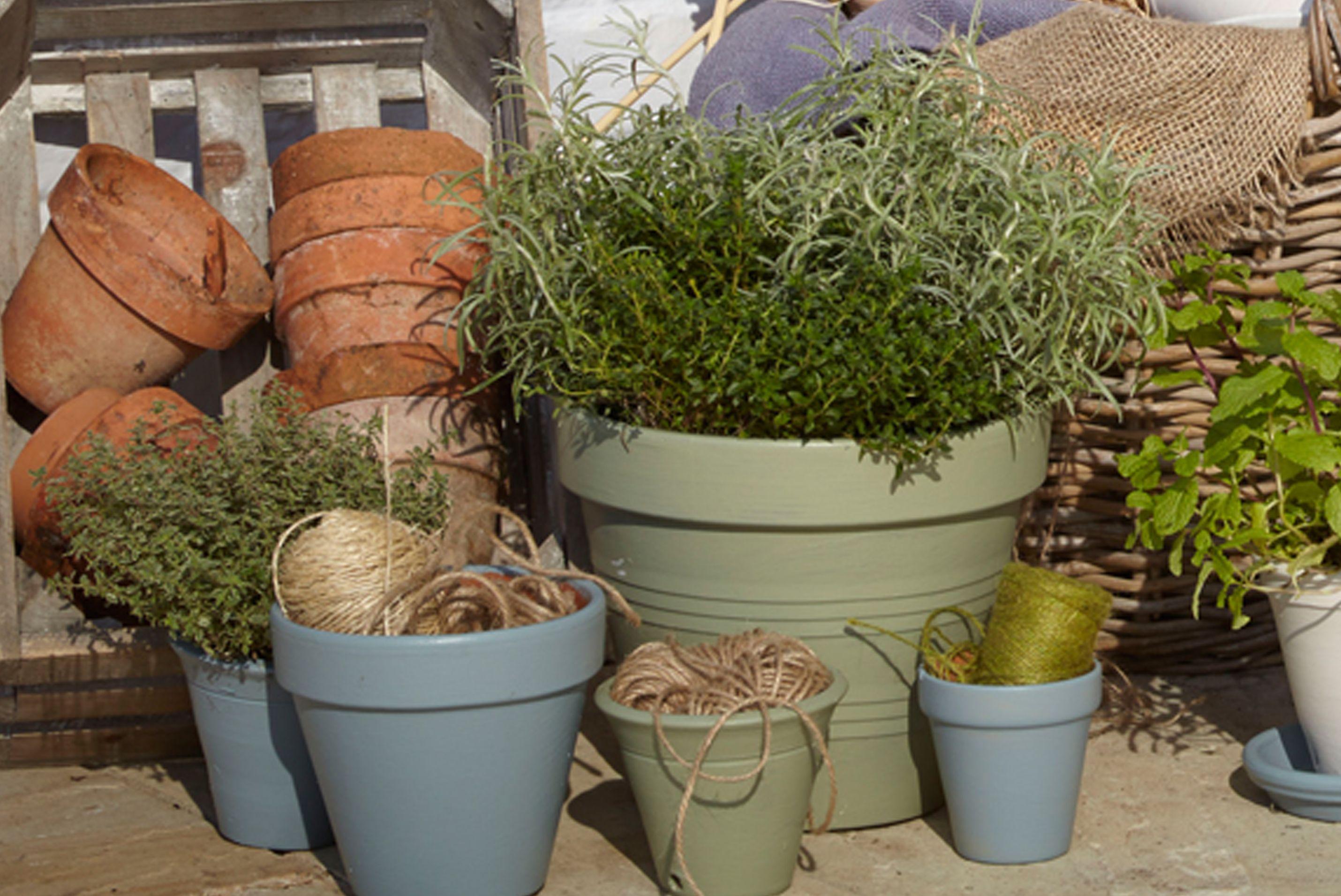 Plant Pot Buying Guide Ideas Amp Advice Diy At B Amp Q