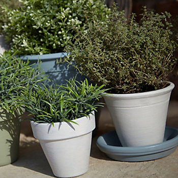 selection of different sized plant pots in a garden