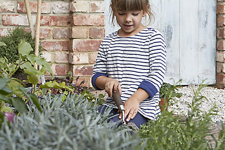 Child in vegetable garden