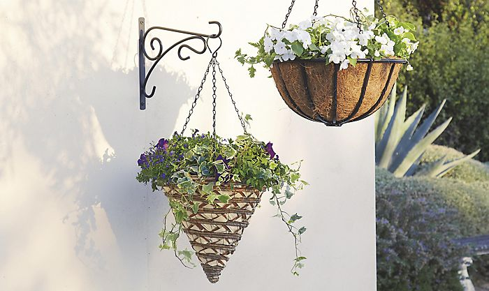 Two hanging baskets with trailing plants