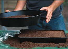 add a layer of compost on top of the seeds