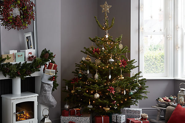 4d58b675a8f Real Christmas tree buying guide. Pick the perfect ...