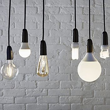range of light bulbs