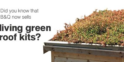 Bon Did You Know That Bu0026amp;Q Now Sells Living Green Roof ...