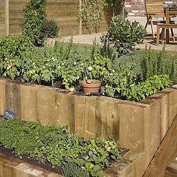 Terraced garden beds with plants, vegetables and herbs