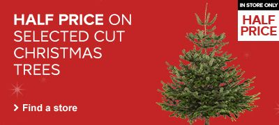HALF PRICE CUT CHRISTMAS TREES