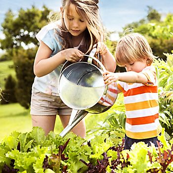 Children watering plants in garden