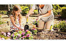 Planting & digging garden hand tools buying guide