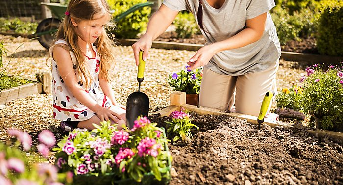 """woman and girl preparing to plant bedding plants in garden"""