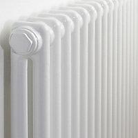 Acova 2 Column Radiator, White (W)1042mm (H)600mm