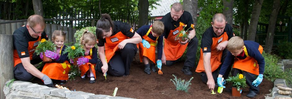 B&Q Store colleagues helping to plant a school garden