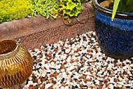 Blooma Alpine mix Brown Decorative stones, Large 22.5kg Bag