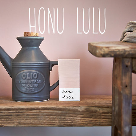 Image of Honu Lulu colour