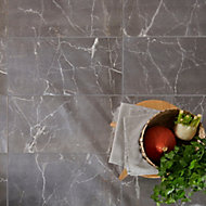 Elegance Silver Gloss Marble effect Ceramic Wall & floor Tile, Pack of 7, (L)600mm (W)300mm