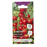 Gardeners delight cherry tomato Seed