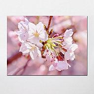 GoodHome Cowani Pink Floral Matt Mural